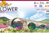 MyFlower – Anteprima Mostra Mercato Azalea – 13 e 14 aprile 2019